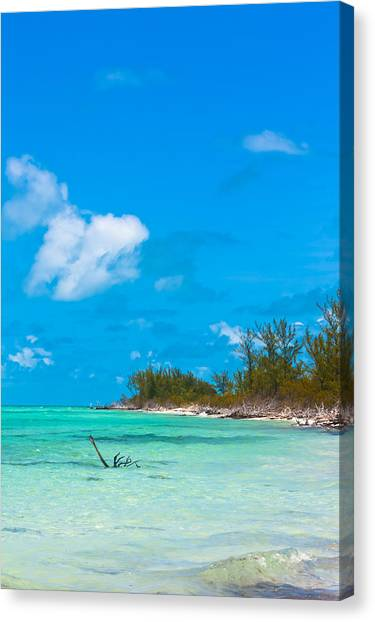 Beach At North Bimini Canvas Print