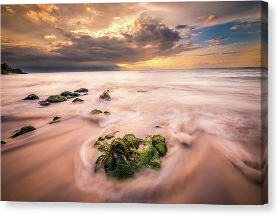 Beach At Paia Canvas Print