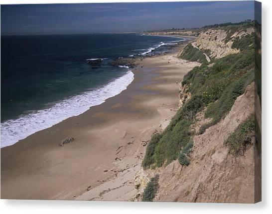Beach Beachcombers And Wildflowers Canvas Print