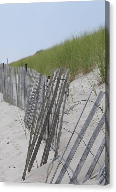Beach Border Canvas Print by Patricia M Shanahan