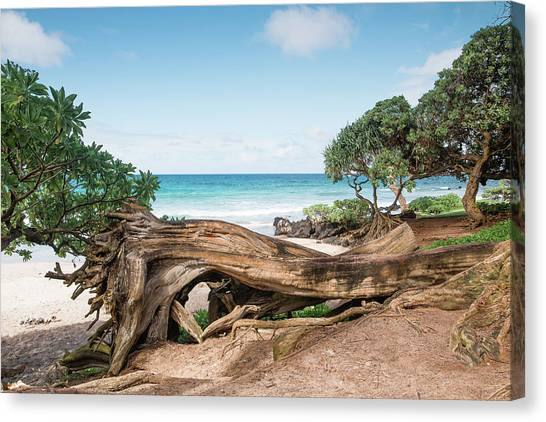 Beach Camping Canvas Print