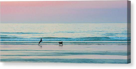 Beach Dogs Playing At Dawn Canvas Print