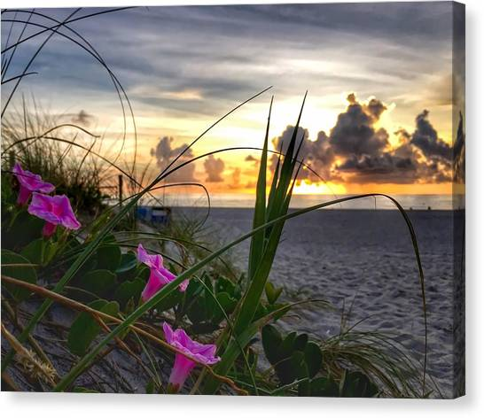 Beach Flowers Canvas Print