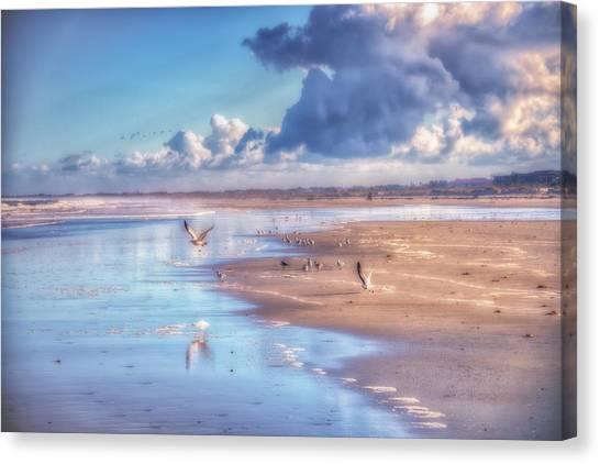 Beach Gulls Canvas Print
