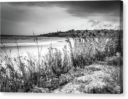 Canvas Print featuring the photograph Beach In Ogunquit by Doug Camara