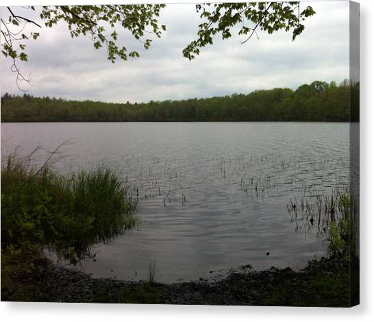 Ponds Canvas Print - Beach Lake by Annie Walczyk