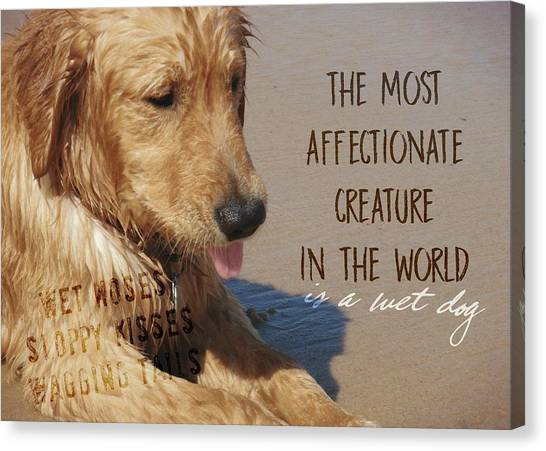 Beach Pup Quote Canvas Print by JAMART Photography