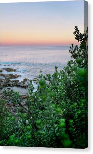 Fluids Canvas Print - Beach Retreat by Az Jackson
