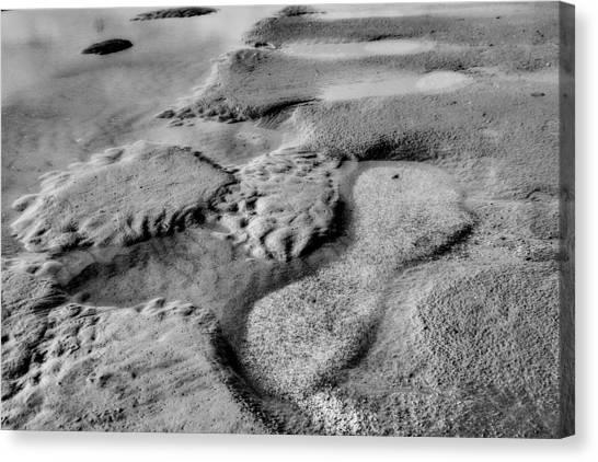 Beach Sand Tide Graffiti  Canvas Print by Randy Steele