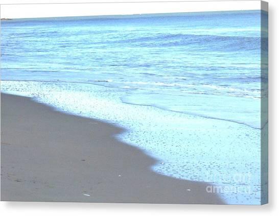 Beach Shore 1 Canvas Print by Brian Booth