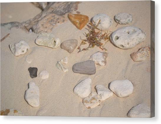 Beach Treasures 2 Canvas Print