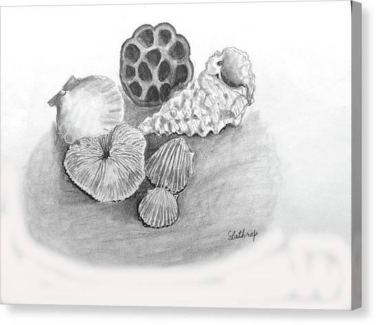 Beach Treasures Canvas Print