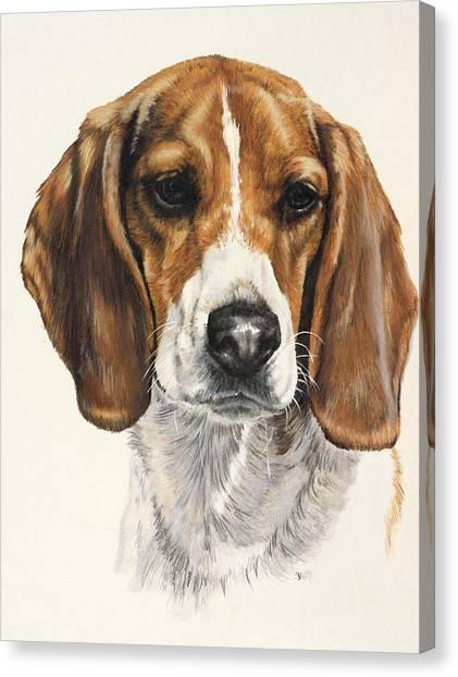 Canvas Print - Beagle by Barbara Keith