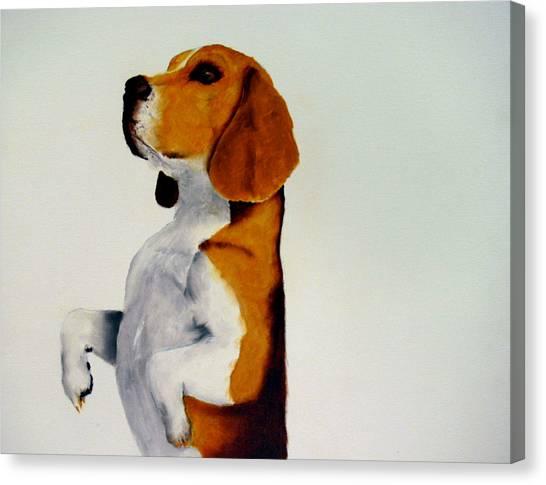 Beagle Canvas Print by Dick Larsen