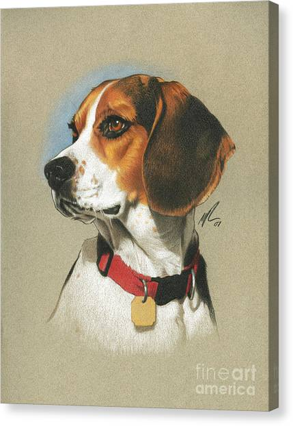 Pencils Canvas Print - Beagle by Marshall Robinson