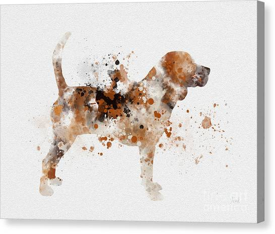 Beagles Canvas Print - Beagle by Rebecca Jenkins