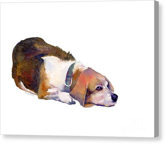 Beagle Canvas Print - Beagle Thoughts by Amy Kirkpatrick
