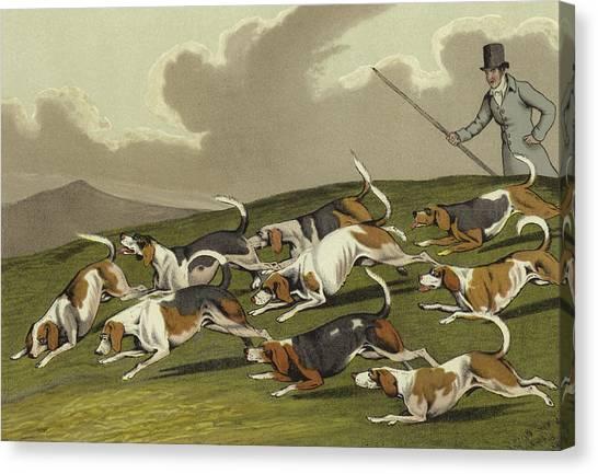 Beagles Canvas Print - Beagles by Henry Thomas Alken