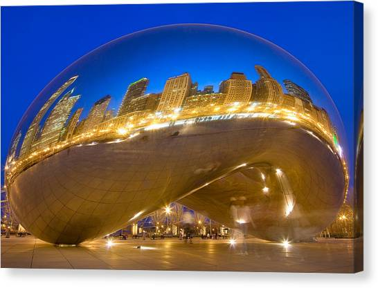 Bean Reflections Canvas Print by Donald Schwartz