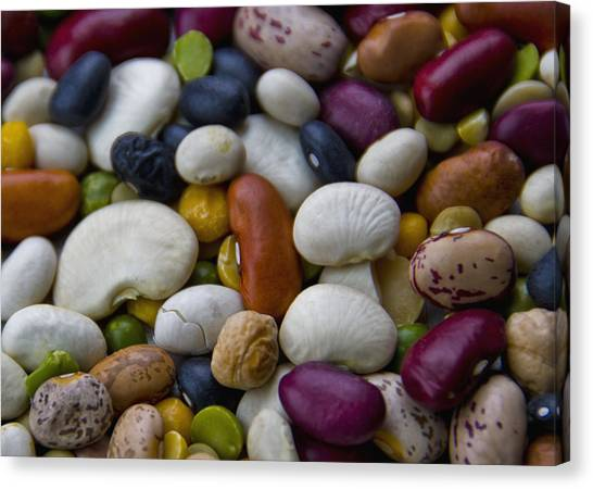 Beans Of Many Colors Canvas Print