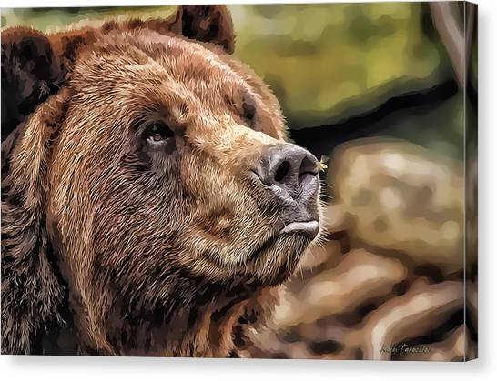 Bear Kiss Canvas Print