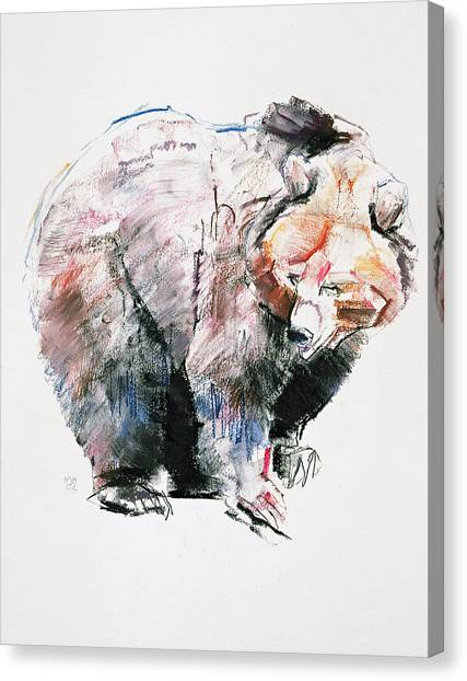 Large Mammals Canvas Print - Bear by Mark Adlington