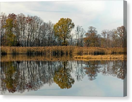 Bear Swamp Mirror Canvas Print