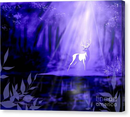 Bearer Of Wishes Canvas Print