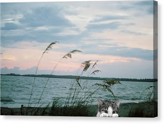 Canvas Print - Bearly Beachin by Cynthia Leaphart
