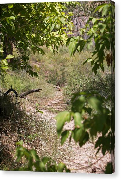 Beaten Path Canvas Print by James Granberry