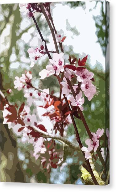 Beautiful Almond Blossoms Canvas Print