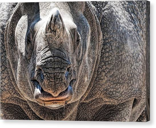 Beautiful Beast Canvas Print