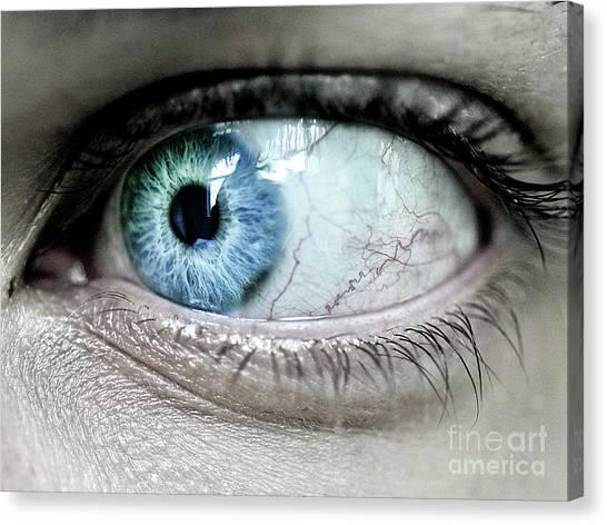 Beautiful Blue Eye Canvas Print