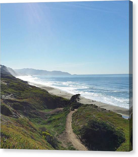 Biology Canvas Print - Beautiful Day At The Beach! Did Not by Alison Wu