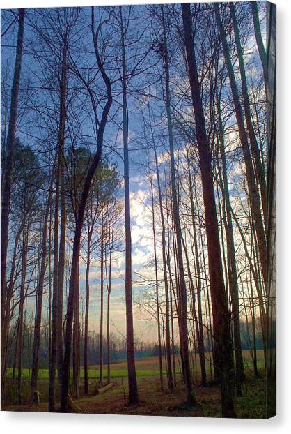 Beautiful Day Canvas Print by Beverly Hammond