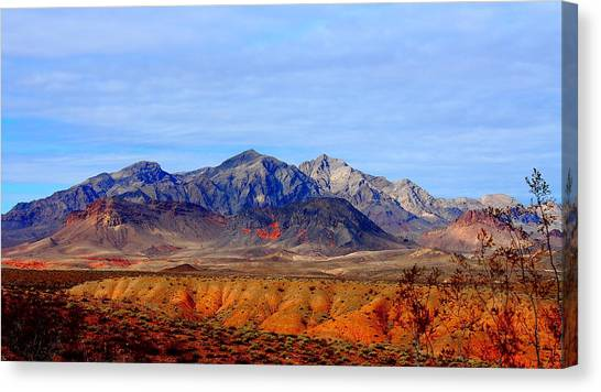 Beautiful Desert Canvas Print