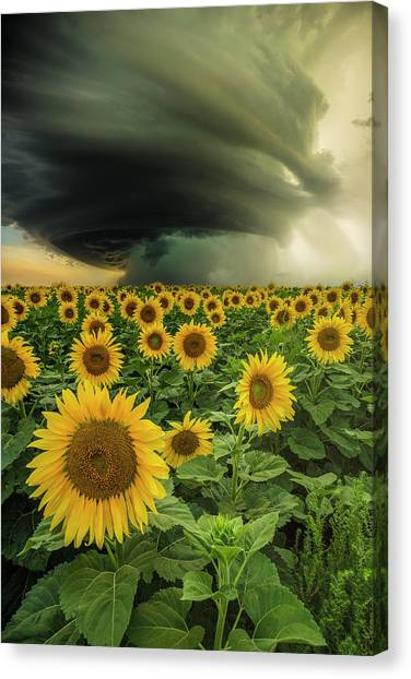 Tornadoes Canvas Print - Beautiful Destruction  by Aaron J Groen