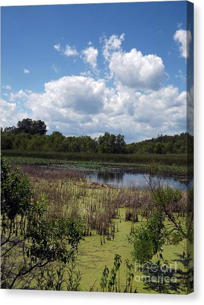 Beautiful Marsh View Canvas Print