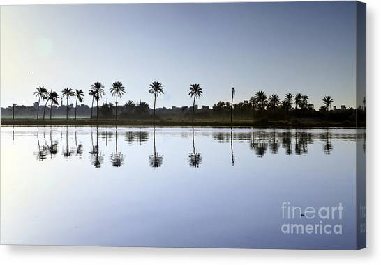 Beautiful Nature In Morning - Egypt. Canvas Print
