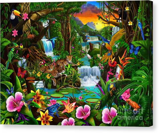 Toucans Canvas Print - Beautiful Rainforest by Gerald Newton