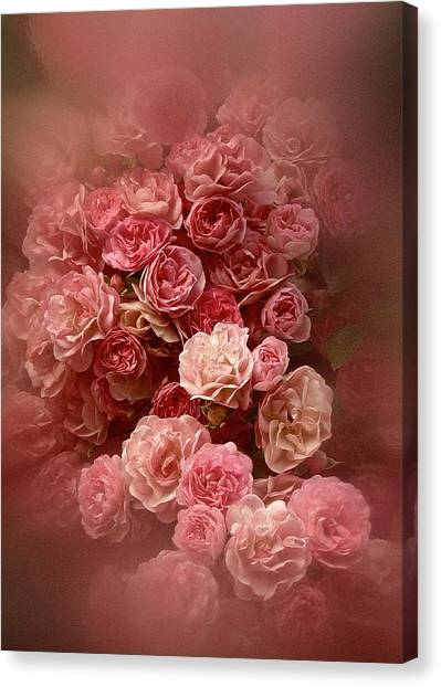 Beautiful Roses 2016 Canvas Print