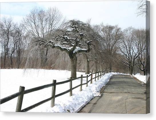 Beautiful Snow Setting Canvas Print by Dennis Curry
