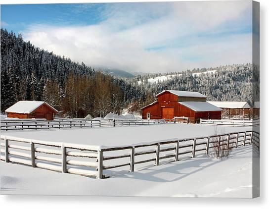 Beautiful Winter Morning Canvas Print