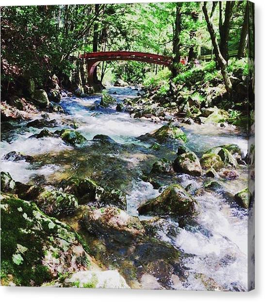 Spiral Canvas Print - #beautiful#forest#ibaraki#rivers by Beauty Spiral