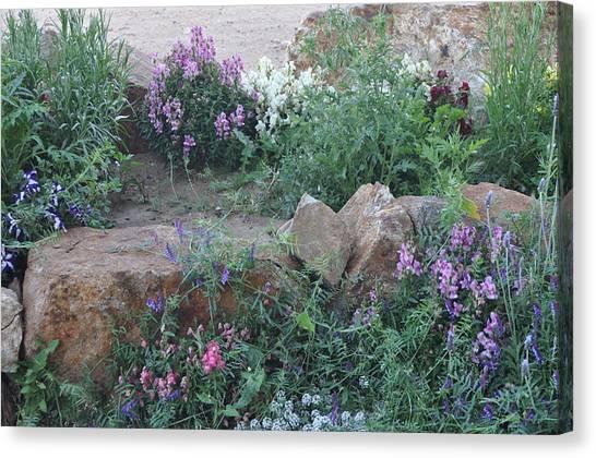 Beauty Amongst The Stones Canvas Print