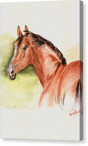 Brown Horse From The Wild Canvas Print by Remy Francis