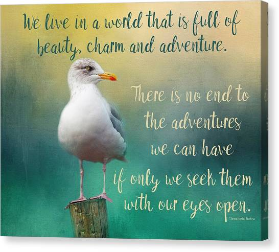 Beauty, Charm And Adventure Canvas Print