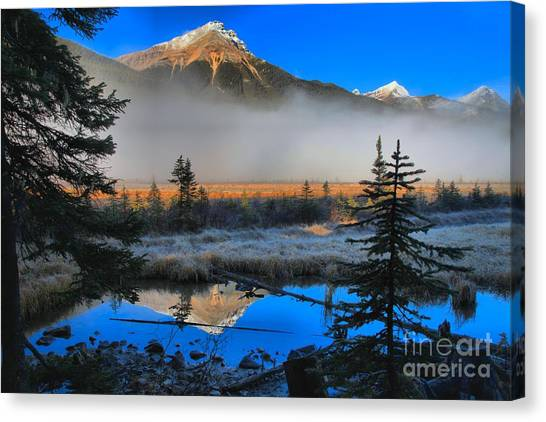Canada Glacier Canvas Print - Beauty Creek Reflections by Adam Jewell