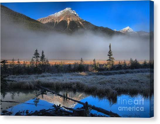 Canada Glacier Canvas Print - Beauty Creek Sunrise by Adam Jewell