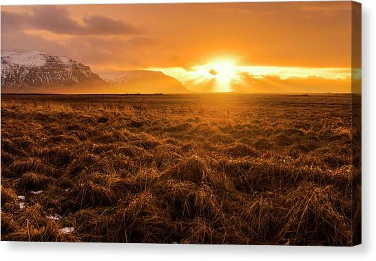 Canvas Print featuring the photograph Beauty In Nature by Pradeep Raja Prints